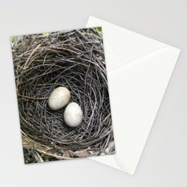 Brown Thrush Eggs Stationery Cards