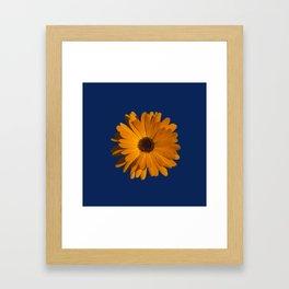 Orange power flower Framed Art Print