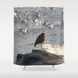 Eagle on Ice Shower Curtain