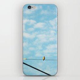 Song Bird iPhone Skin