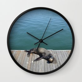 Sea Lion Smile Wall Clock