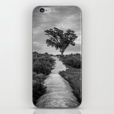Windswept Tree at Fort Fisher NC -- Black and White Coastal Landscape iPhone & iPod Skin
