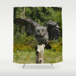 Baby Great Gray Owl Shower Curtain