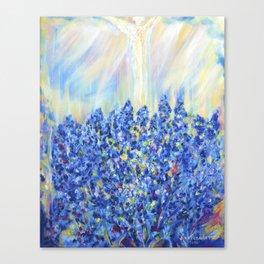 Lavender after the rain, flowers Canvas Print