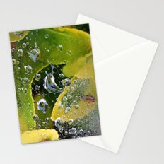 PhotoYero Stationery Cards