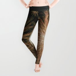 Gold Stars Wrapped in Night Leggings