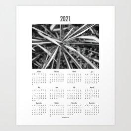Calendar 2021 Botanical  Art Print