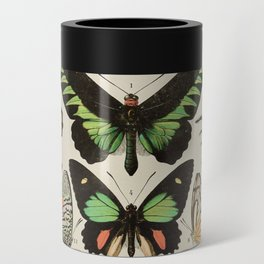 Papillon II Vintage French Butterfly Chart by Adolphe Millot Can Cooler