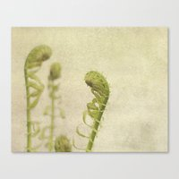 fern Canvas Prints featuring Fern by Pure Nature Photos