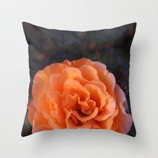 Holland Park Rose Throw Pillow