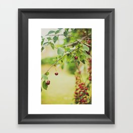 Cherries... Framed Art Print
