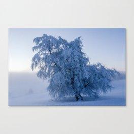 Snowy Tree on a Foggy Mountain Sunrise - Landscape Photography Canvas Print