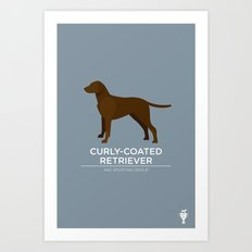 Curly-Coated Retriever Art Print