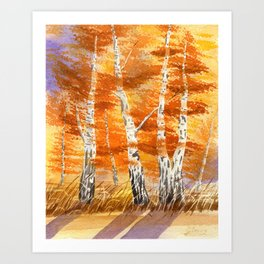 Autumn Silver Birches Art Print