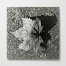 'Maple Leaf' Metal Print