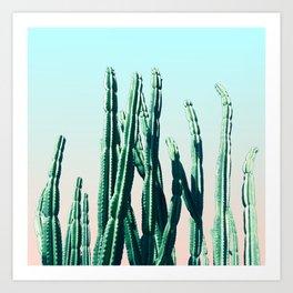 Green Cactus 10 Summer Art Print