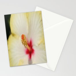 Stamen With Yellow Hibiscus Petal Background  Stationery Cards