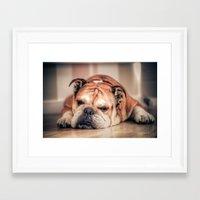 english bulldog Framed Art Prints featuring English Bulldog by Hello Tokyo Go Go