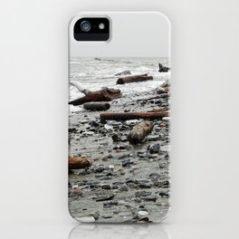 Driftwood Beach after the Storm iPhone Case