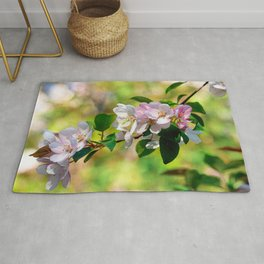 Cluster of pink crabapple flowers. Blooming beauty Rug