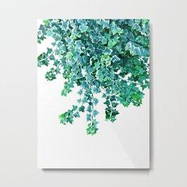 Ivy Delight #4 #wall #decor #art #society6 Metal Print