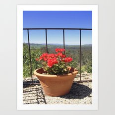 Plant with a View Art Print