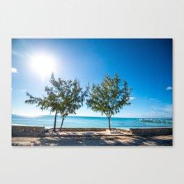 Turks and Caicos beach Canvas Print