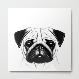Black White Pug Pencil Sketch Metal Print