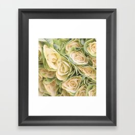 Greenyellow roses Framed Art Print