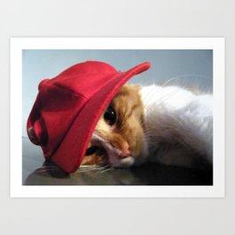 Cute Cat Wearing Red Cap Art Print
