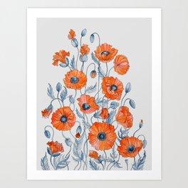 Poppies botanical art Art Print