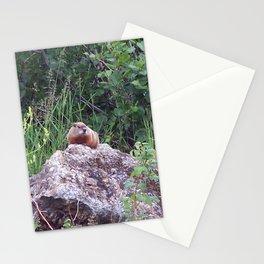 Groundhog on a Rock Stationery Cards