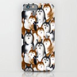 A Bunch of Siberian Huskies iPhone Case