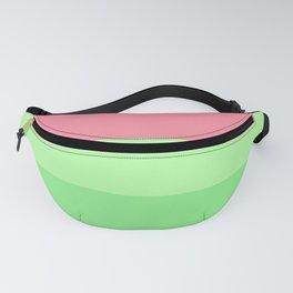 Watermelon Paradise Stripe Colour Palette Fanny Pack