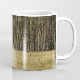 Cow Elk Resting - Grand Tetons Coffee Mug