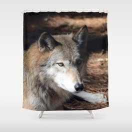 The Eyes of a Wolf Shower Curtain