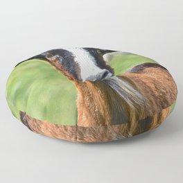 commentary Floor Pillow
