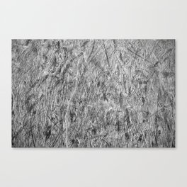 Scratches and scrapes  Canvas Print