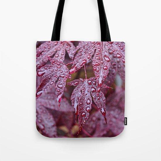 Japanese Acer palmatum Atropurpurea  Tote Bag