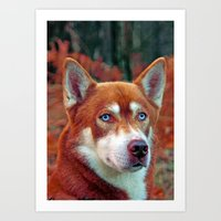 ginger Art Prints featuring ginger by Doug McRae