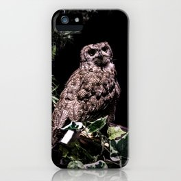 Handsome Hooter iPhone Case