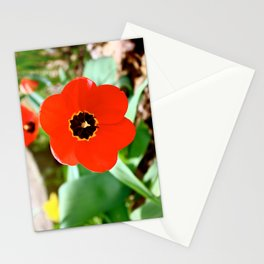 Red Portal Stationery Cards
