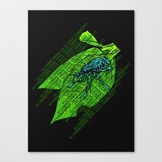 Leap Year Bug Canvas Print