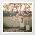 Magnolia Tree  by wmshop