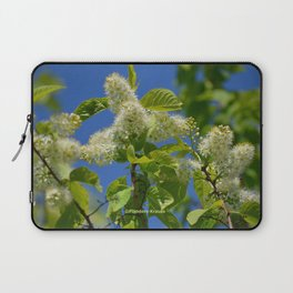 Mayday Tree in Bloom Laptop Sleeve