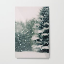 Winter Daydream Metal Print
