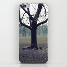parktree iPhone & iPod Skin