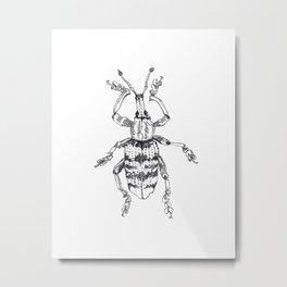Weevil Metal Print