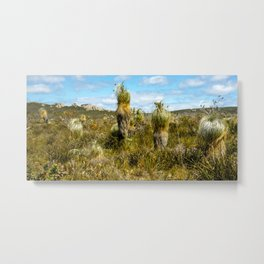 Waychinicup National Park, Western Australia Metal Print
