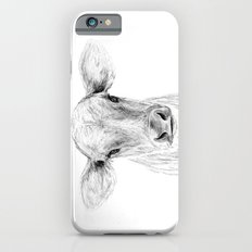 Moo ::  A Young Jersey Cow iPhone 6s Slim Case